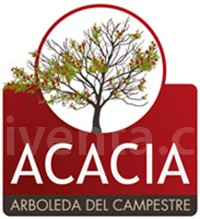 Acacia - Arboleda